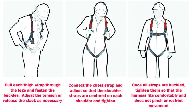 How to put a harness on.